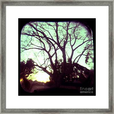 Crepescule Framed Print by Andrew Paranavitana