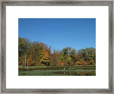 Crisp Fall Day In Minnesota Framed Print by Brian  Maloney
