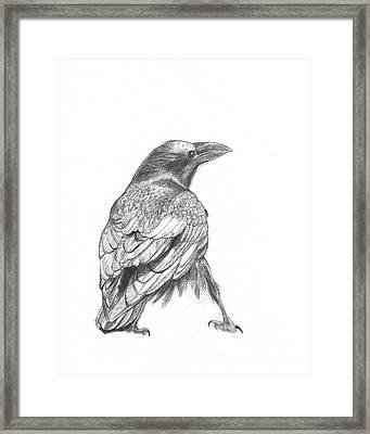 Crow Framed Print by Kazumi Whitemoon