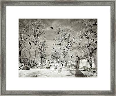 Crow's Halloween Dance Framed Print by Gothicolors Donna Snyder