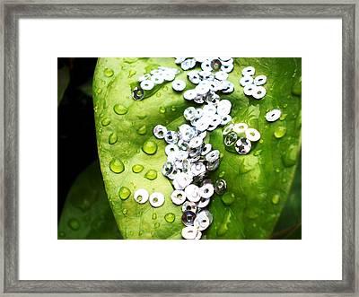 Crystal Dew Drops On Leaf Framed Print by Sumit Mehndiratta