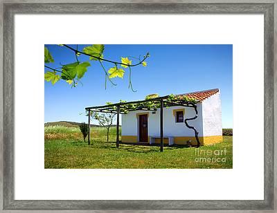 Cute House Framed Print by Carlos Caetano