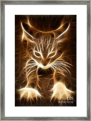 Cute Little Kitten Framed Print by Pamela Johnson