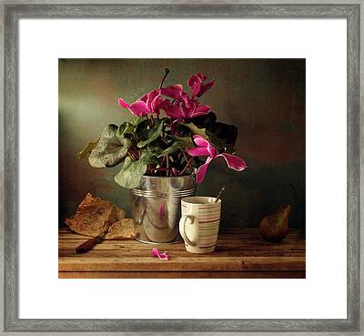 Cyclomen Flower Pot And Cup With Strips Framed Print by Copyright Anna Nemoy(Xaomena)