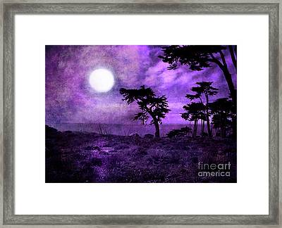 Cypress Trees At Sutro Heights Framed Print by Laura Iverson