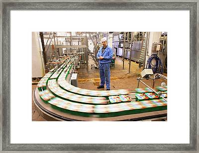 Dairy Factory Production Line Framed Print by Ria Novosti