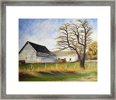 Dairy Farm Framed Print by Jared Theberge