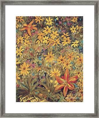 Daiseys Framed Print by Jim Barber Hove