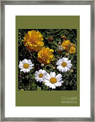 Daisies And Marigolds Framed Print by Dale   Ford