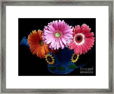 Daisy Can Framed Print by John Rizzuto