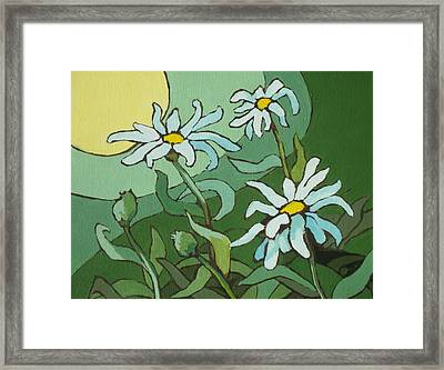 Daisy Dance Framed Print by Sandy Tracey