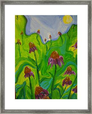 Dance Of The Coneflowers Framed Print by Stephanie Mills