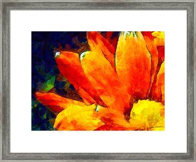 Dancing Daisy 3 Framed Print by Angelina Vick