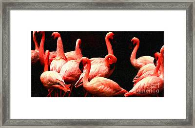Dancing Flamingos Framed Print by Wingsdomain Art and Photography