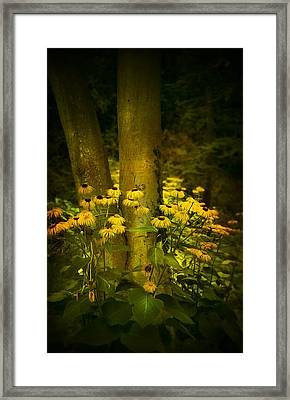 Dancing In A Ring Framed Print by Svetlana Sewell