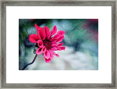 Dancing In The Dark Framed Print by Margaret Hormann Bfa