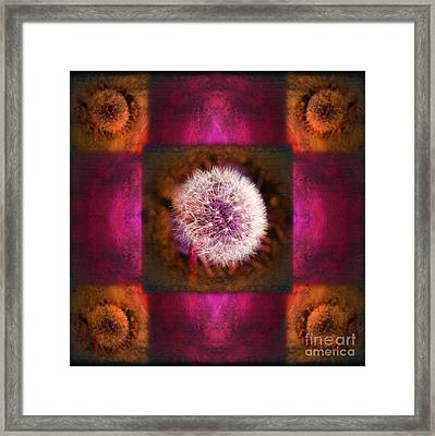 Dandelion In Flame Framed Print by Laura Iverson