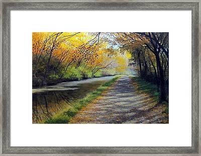 Dappled Autumn Light Framed Print by David Bottini