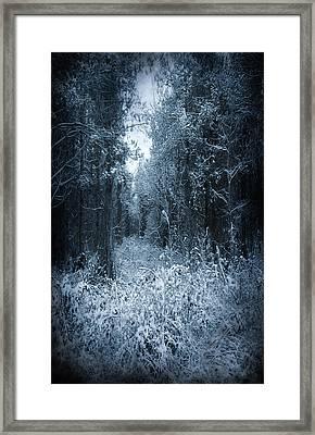 Dark Place Framed Print by Svetlana Sewell