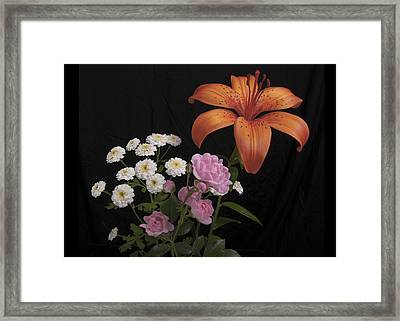 Daylily And Roses Framed Print by Michael Peychich