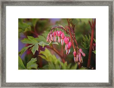 Deep In The Hearts Framed Print by Susan Capuano