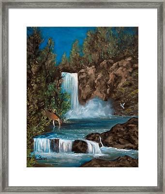 Deer Falls Framed Print by Gloria Jean