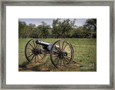 Defense Framed Print by Fred Lassmann