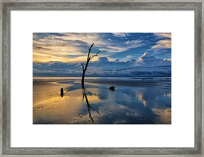 Defying The Elements Framed Print by Claudia Domenig