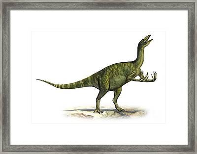 Deinocheirus Mirificus, A Prehistoric Framed Print by Sergey Krasovskiy