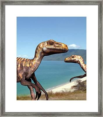Deinonychus Dinosaurs Framed Print by Christian Darkin