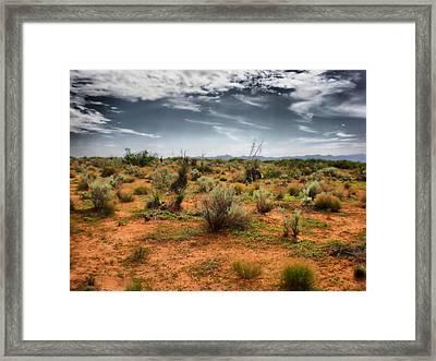Desert Of New Mexico Framed Print by Thomas  MacPherson Jr