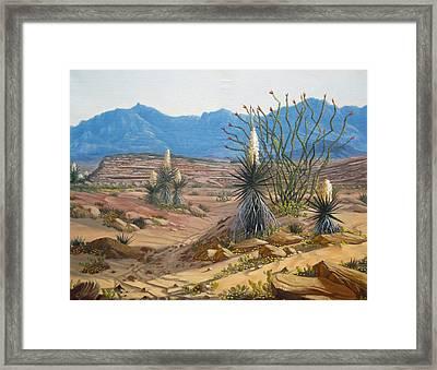 Desert Streams Framed Print by Rick Mittelstedt