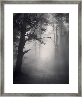 Desire Realized Framed Print by Mark Singles