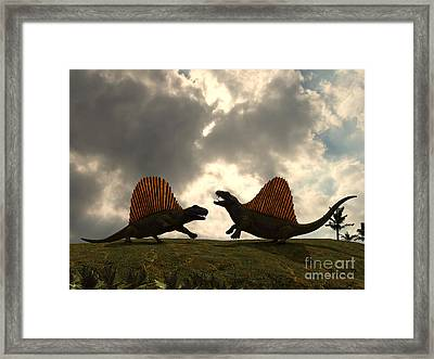 Dimetrodon Fight Over Territory Framed Print by Walter Myers