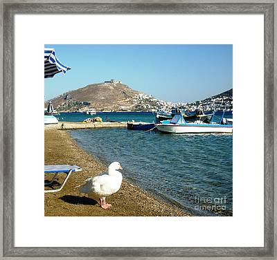 Dip Time Framed Print by Therese Alcorn