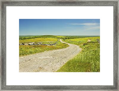 Dirt Road Going Through Large Blueberry Field Maine Framed Print by Keith Webber Jr