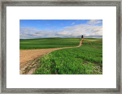 Dirt Roads Framed Print by Beve Brown-Clark Photography