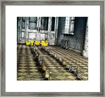 Discipline Framed Print by Jutta Maria Pusl