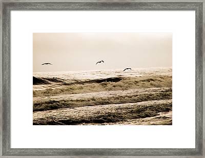 Dodging The Waves Framed Print by Trish Tritz