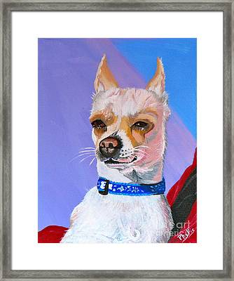 Doggie Know It All Framed Print by Phyllis Kaltenbach