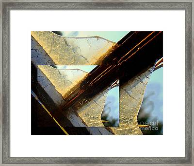 Double Jointed  Framed Print by Tammy Cantrell