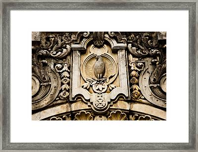 Dove And Olive Branch Framed Print by Mark Weaver