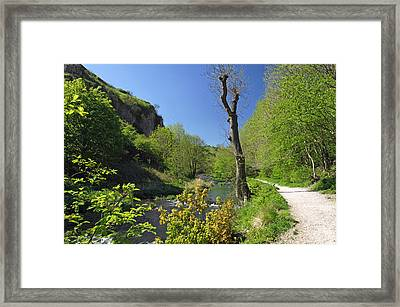 Dove Valley - Beside The River Framed Print by Rod Johnson