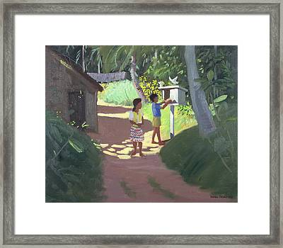 Dovecote Framed Print by Andrew Macara