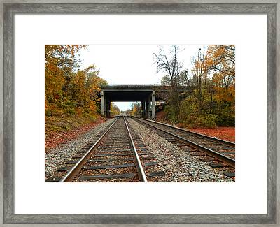 Down The Lines Framed Print by Sandi OReilly