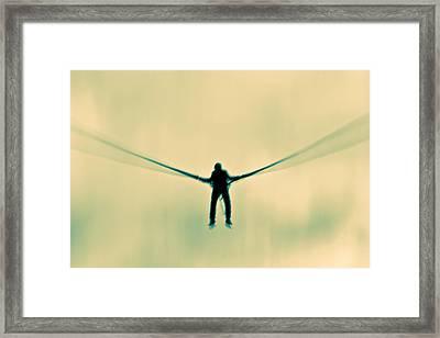 Dragonfly Framed Print by Justin Albrecht
