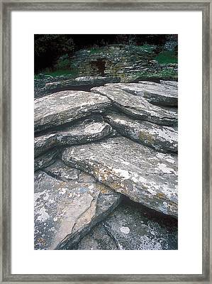 Dragonhouse Roof  Framed Print by Andonis Katanos