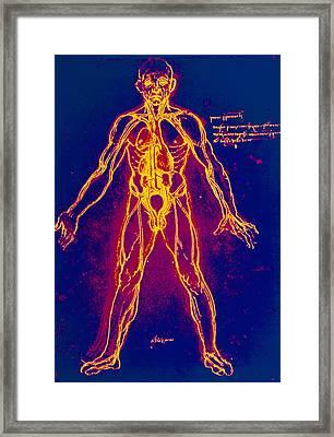 Drawing Of Human Venous System (leonardo Da Vinci) Framed Print by Mehau Kulyk