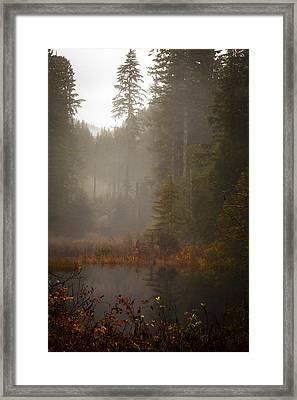 Dream Of Autumn Framed Print by Mike Reid