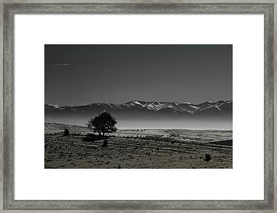 Dreaming Away... Framed Print by Fire Rose